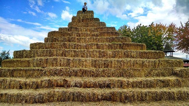 dítě na slámové pyramidě