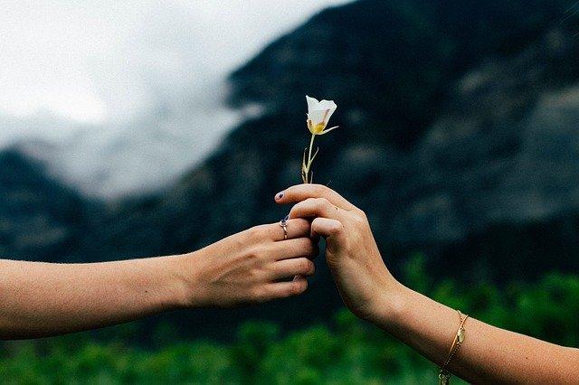 podání kytky