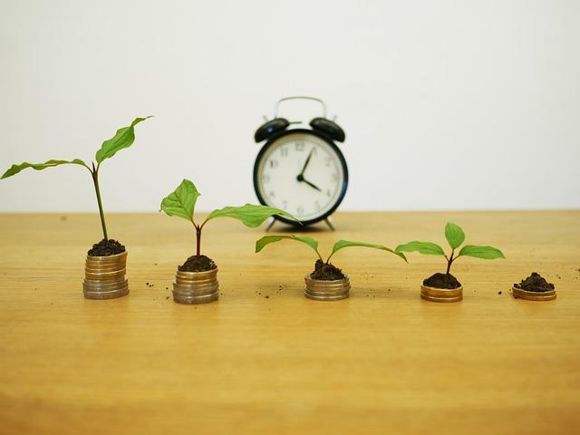finanční růst – mince, budík, květiny.jpg